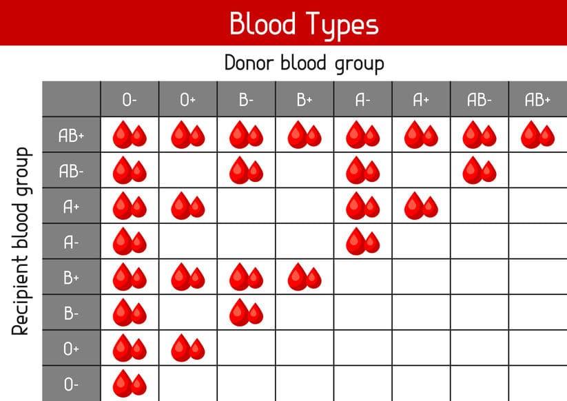 tabella gruppi sanguigni